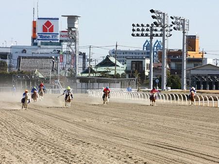 120219ポニーレースin川崎-レース-03