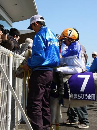 120219ポニーレースin川崎-ウィナーズサークルへ向かうちびうま達-02