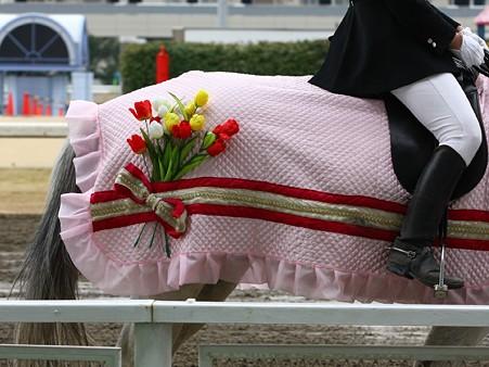 川崎競馬の誘導馬03月開催 チューリップVer-120301-19