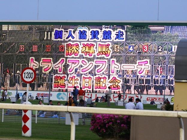 写真: 川崎競馬の誘導馬05月開催 誕生日記念レースVer-21-large