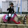 写真: 川崎競馬の誘導馬05月開催 藤Ver-120516-03-large