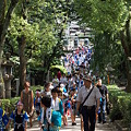 Photos: 宮入り
