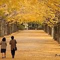 Photos: 二人っきり
