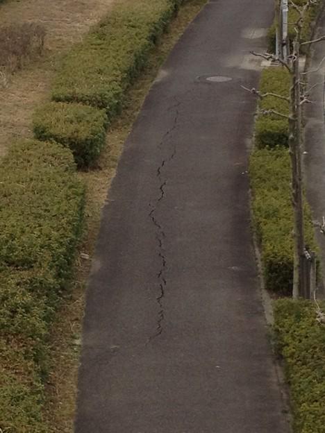 桃花台センター交差点付近の歩道にできた亀裂_07