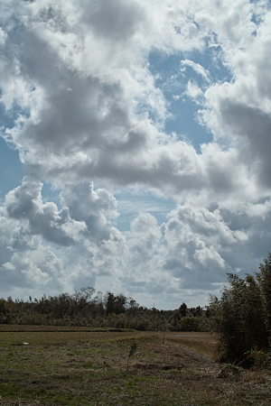 cloud03252012dp2-01