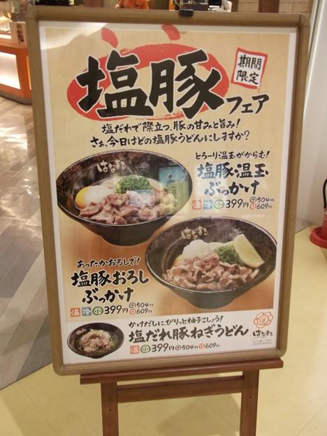 はなまるうどん・イオン日吉津店2012.01 (2)