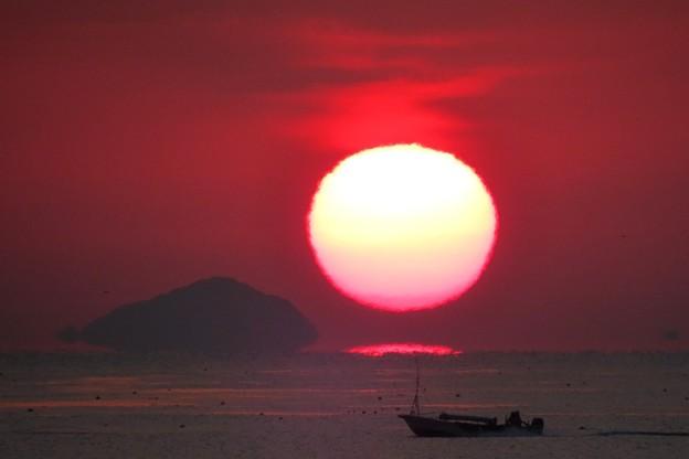写真: 朝陽と海苔つみ船