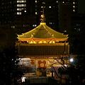 Photos: たまには夜の上野公園2-981c