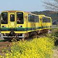 いすみ鉄道 ムーミン列車3