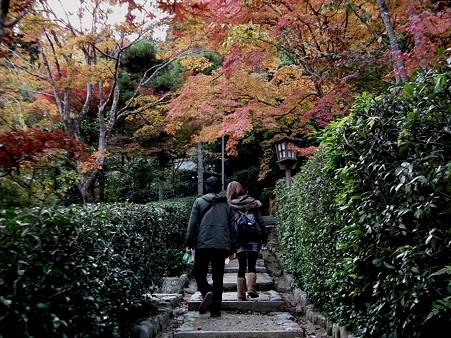 京都 327