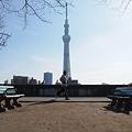 Photos: IMG_09336 隅田公園