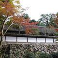 Photos: 正暦寺福寿院