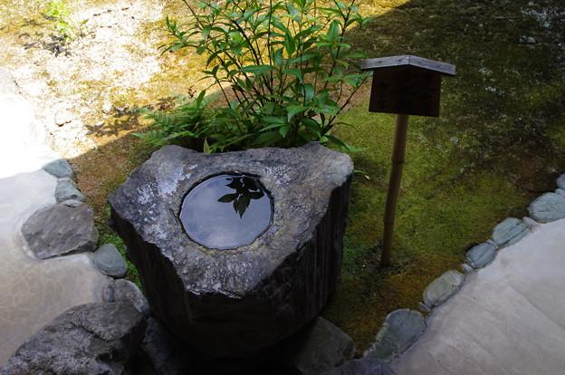 慈光院の手水鉢