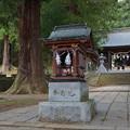 写真: 河口浅間神社・波多志神
