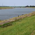 写真: 初夏の小貝川