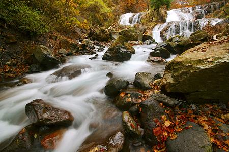 玉簾滝 2011 紅葉