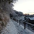写真: 120124 鶴川台尾根緑地