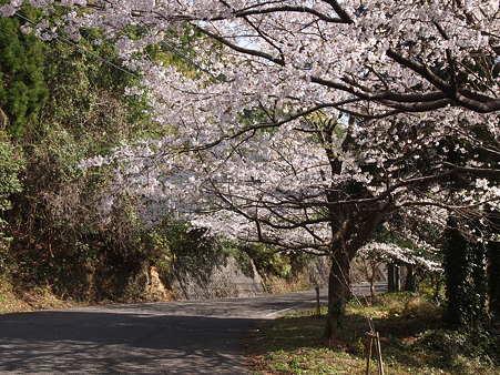 2012 春