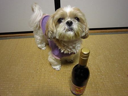 ワインと一緒に…
