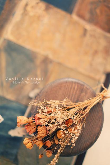 Photos: Honey's Nest Lodge 12