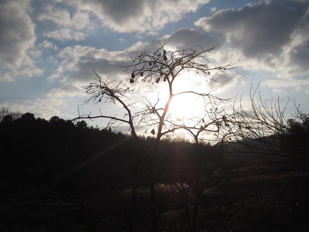 今日の夕陽~