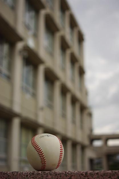 校舎と白球