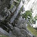 石の間から水が
