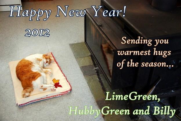 写真: Happy New Year 2012