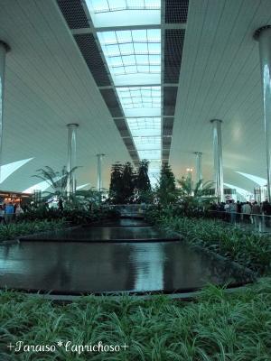 ドバイ空港・ターミナル1a
