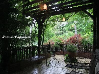 イゾルデのお庭2