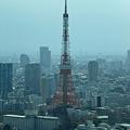 Photos: 汐留からみた東京タワー
