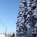 大雪と青空