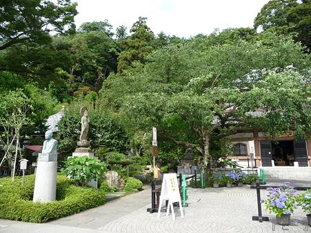 110624-長谷寺 (8)