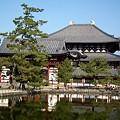 写真: 東大寺中心伽藍20111229