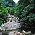 写真: 20110627_123401_raw