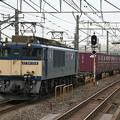 Photos: _MG_0653 EF64-1014 『鹿島貨物』76レ