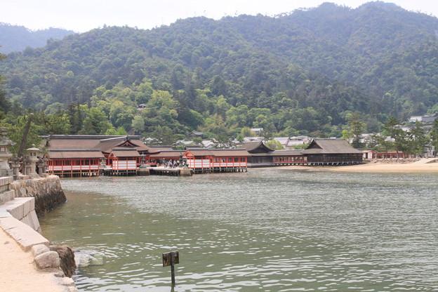 Photos: 110516-2四国中国地方ロングツーリング・厳島神社
