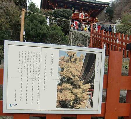 tsurugaoka hatimangu-240111-7