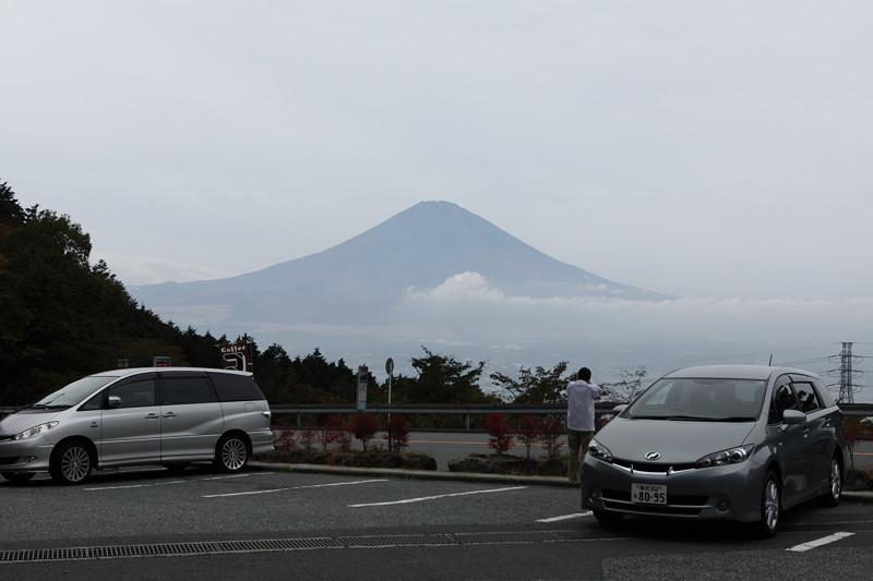 IMG_5270金時山登山・仙石原のすすき