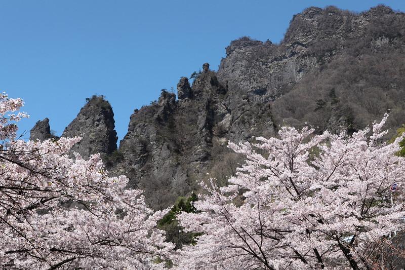 IMG_6096妙義山_艶桜_さくらの里