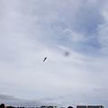 Photos: 機動飛行