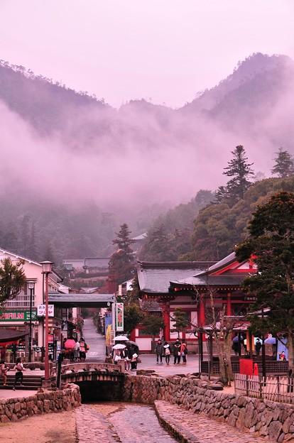 朝、雨もあがり一気に気温が上がり出し霧が