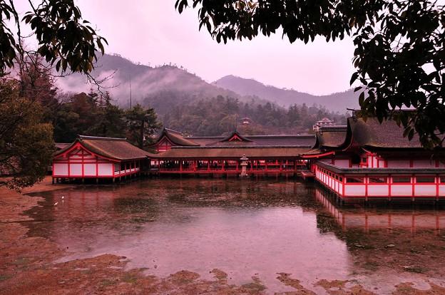 満潮から徐々に干潮へ宮島厳島神社・・