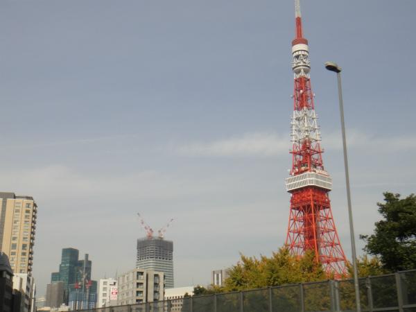 スカイツリーの後では東京タワーも小さく見える