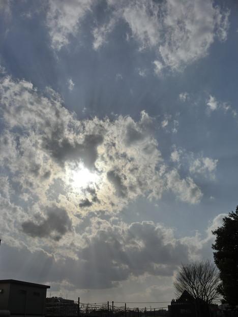 空・桜上水・20120401-01